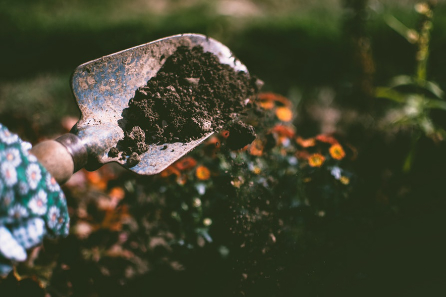SUSTAINABLE LIVING - How to Make Your Home Eco-Friendly - composting
