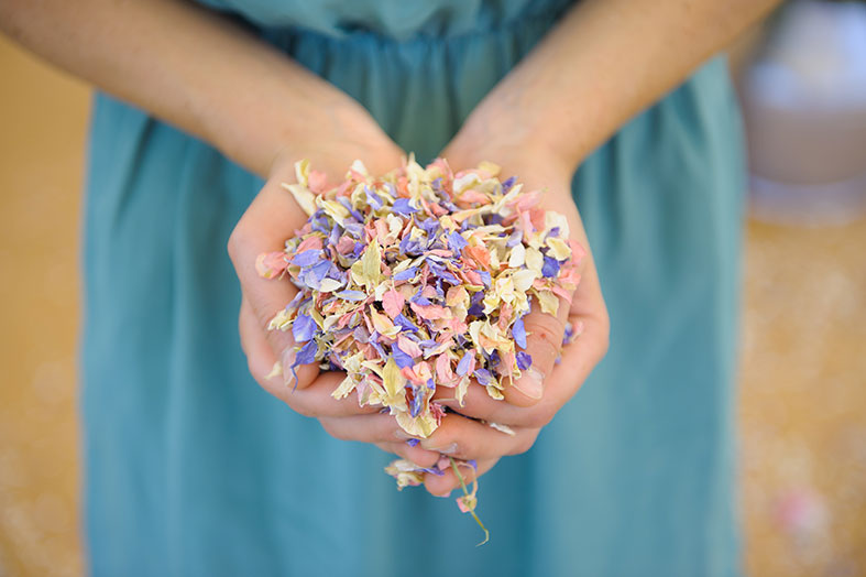 British grown flower petal wedding confetti by Shropshire Petals