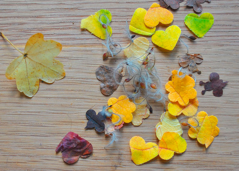 Make your own DIY natural leaf confetti for FREE!