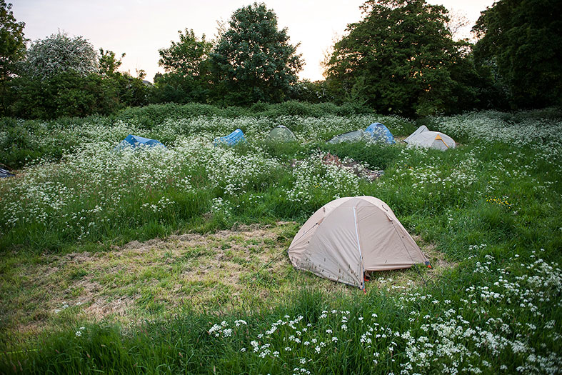 Our guests camped in a neighbouring field for the weekend
