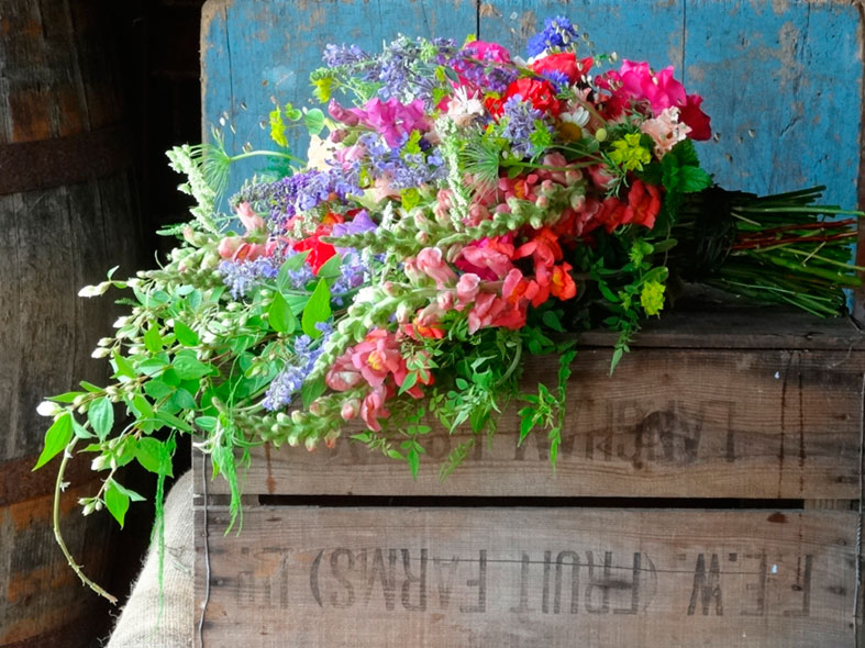 BRITISH FLOWERS WEEK | Celebrating British Flowers and Flower Farmers