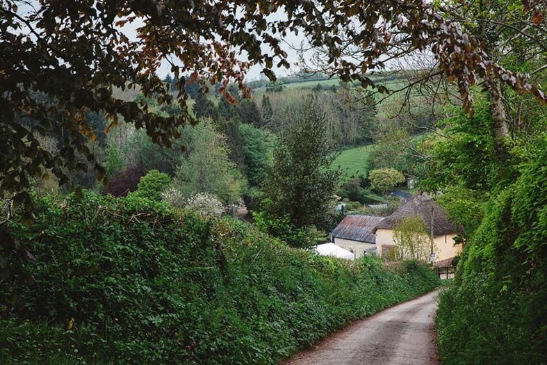 Image: Oxi Photography - Middle Coombe Farm is set deep in the Devon Countryside