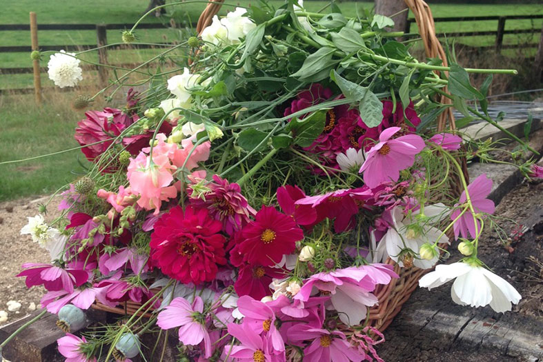 Stunningly just picked seasonal garden flowers grown by Bouquets and Butterflies