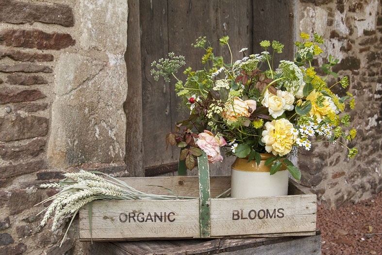BRITISH FLOWERS WEEK 2017 | Celebrating Bristol Organic Flower Farmers | Organic Blooms