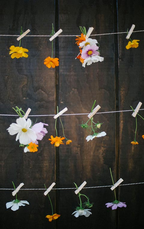 how-to-create-romantic-cosmos-flower-garland.jpg