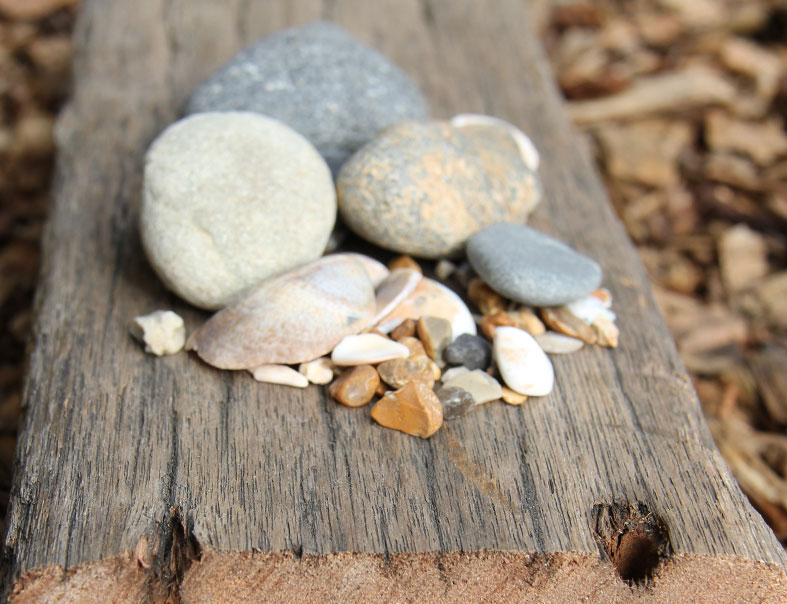 Wood from old Brighton Pier and pebbles from the beach can be used in the rings